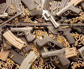 FG TO ESTABLISH CENTRE FOR CONTROL OF SMALL ARMS AND LIGHT WEAPONS