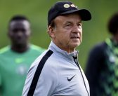 GERNOT ROHR BACKS OSIMHEN TO FLY HIGH IN NAPOLI